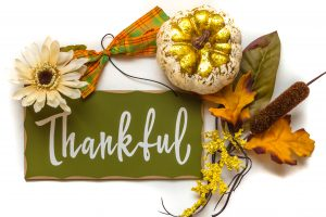Autumn green thankful sign flower, pumpkin, cat tail and bow.